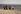 Chaises longues sur une plage. © Roger-Viollet