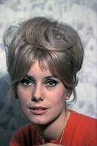 Catherine Deneuve (born in 1943), French actress. © Jack Nisberg / Roger-Viollet
