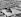 Vue aérienne de la mosquée d'Omar. Jérusalem (Palestine, Israël). © Collection Roger-Viollet / Roger-Viollet