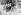 Guerre 1939-1945. FFI à la Libération de Marseille (Bouches-du-Rhône). 29 août 1944. © LAPI/Roger-Viollet