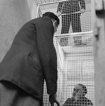 Prison of Fresnes (Val-de-Marne). The visiting room and its double wire netting. 1947. © Gaston Paris / Roger-Viollet