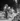 World War II. Gas rationing in Paris. Bicycles parked in front of the Printemps department store, boulevard Haussmann. Paris (IXth arrondissement), July 1943. Photograph by André Zucca (1897-1973). Bibliothèque historique de la Ville de Paris. © André Zucca / BHVP / Roger-Viollet