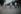 Guerre 1939-1945. Cyclistes, sur les Champs-Elysées, Paris. Photographie d'André Zucca (1897-1973). Bibliothèque historique de la Ville de Paris. © André Zucca/BHVP/Roger-Viollet