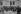 Cérémonies du 11 novembre en présence de Valéry Giscard d'Estaing (né en 1926), président de la République française. Personnalités politiques devant la cathédrale Notre-Dame de Paris, 1978. © Jacques Cuinières / Roger-Viollet
