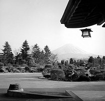 Japanese garden. Background : view of the Mount Fuji from Kawaguchi (Japan), March 1962. © Hélène Roger-Viollet/Roger-Viollet