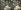 Arab café. Cairo (Egypt), around 1870. © Léon et Lévy / Roger-Viollet