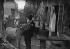 Paris, Montmartre. Le Lapin Agile. Frédé et son âne. © Roger-Viollet