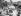 Guerre 1939-1945. Débarquement de Normandie. Halte des troupes américaines près de Saint-Lô (Manche), juillet 1944. © Jacques Boyer / Roger-Viollet