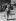 Le Conquet (Finistère), retour de pêche aux araignées de mer. © CAP/Roger-Viollet