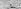 Chasse à l'ours dans l'Arctique. © Roger-Viollet