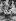 Anschluss. Entrée des troupes allemandes de la Wehrmacht en Autriche : agent hospitalier allemand avec un jeune autrichien. Autriche, 13 mars 1938. © Ullstein Bild / Roger-Viollet