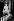"""Audrey Hepburn (1929-1993), actrice britannique, déguisée en tulipe pour l'avant-première de la revue """"Sauce Piquante"""" de Cecil Landeau. Londres (Angleterre), Cambridge Theatre, 17 avril 1950. © PA Archive / Roger-Viollet"""