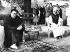 La Dalaï-Lama, lors d'une visite au Maharaja de Sikkim. Gangtok (Sikkim, Inde), 8 avril 1959. © Ullstein Bild/Roger-Viollet