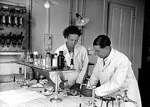 Frédéric and Irène Joliot-Curie, French physicists, working on the irradiation of a metallic strip to radioactivate its surface, in their laboratory in the radium Institute, 1934. © Albert Harlingue/Roger-Viollet