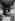 Un atelier d'artistes à la Ruche, Passage de Dantzig (Paris XVème arr.), 1906. © Maurice-Louis Branger/Roger-Viollet