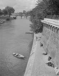 The river Seine. Vert-Galant park and pont des Arts. Paris (Ist arrondissement). Photograph by René Giton (known as René-Jacques, 1908-2003). Bibliothèque historique de la Ville de Paris.  © René-Jacques/BHVP/Roger-Viollet