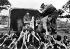 Guerre d'Indochine. Distribution de vêtements et de nourriture par des soldats français à la population indigène sur la route de Soc-Trang à Bac-Lieu. © Roger-Viollet