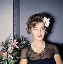 Romy Schneider (1938-1982), actrice autrichienne. © Collection Roger-Viollet / Roger-Viollet