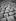 Feuilles mortes sur les pavés. Paris, novembre 1948.      © Roger-Viollet