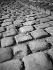 Dead leaves on cobblestones. Paris, November 1948.  © Roger-Viollet