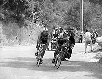 1964 Tour de France. Raymond Poulidor (1936-2019), French racing cyclist, and Federico Bahamontes (born in 1928), Spanish racing cyclist. © Roger-Viollet