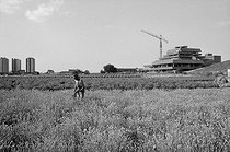 Construction of the Bobigny prefecture in the middle of the fields of market gardeners and horticulturists. Yugoslavian worker. Bobigny (France), July 1970. Photograph by Léon Claude Vénézia (1941-2013). © Léon Claude Vénézia/Roger-Viollet
