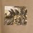 """""""La Walkyrie"""", opéra de Richard Wagner. Brünnhilde et les Walkyries. Illustration de Arthur Rackham (1867-1939), 1910. Collection Bruno Lussato. Paris B.N.F. © Colette Masson / Roger-Viollet"""