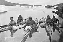 Chasse aux phoques chez les Inuits. Groenland. © Haeckel Collection/Ullstein Bild/Roger-Viollet