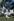 Couple en vacances. Miami (Floride), dans les années 1960. © Alinari/Roger-Viollet