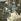 Café arabe. Le Caire (Egypte), vers 1870. Détail d'une vue stéréoscopique colorisée. © Léon et Lévy / Roger-Viollet