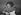 """Antonine Maillet (née en 1929), écrivain canadien, prix Goncourt 1979 pour """"Pélagie la Charrette"""", dédicaçant son livre. 1980.     © Roger-Viollet"""