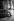 Andy Warhol (1928-1987), artiste, dessinateur, vedette du pop art et cinéaste américain. © Jack Nisberg / Roger-Viollet