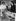 Margaret Roberts (future madame Thatcher), candidate du parti Conservateur à Dartford, faisant campagne dans son corps électoral. 4 octobre 1951. © TopFoto / Roger-Viollet