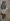 """Jean-Louis Forain (1852-1931). """"La Parisienne"""" (mosaïque qui décorait """"le Café Riche"""", boulevard des Italiens). Paris, musée Carnavalet.  © Roger-Viollet"""
