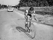 Raymond Poulidor (1936-2019), French racing cyclist. © Roger-Viollet