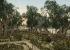Le mont des Oliviers et le jardin de Gethsémani. Jerusalem (Palestine, Israël), vers 1880-1890. © Roger-Viollet
