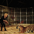 Moreno-Bormann circus. Diana Moreno, circus artist, and the tiger. 1992. © Kathleen Blumenfeld/Roger-Viollet