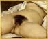 """Gustave Courbet (1819-1877). """"L'Origine du monde"""", 1866. Paris, musée d'Orsay.      © Roger-Viollet"""