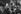 """Gisèle Halimi (1927-2020), avocate, militante féministe et politique française d'origine tunisienne, lors d'une réunion du mouvement """"Choisir de donner la vie"""", dont elle est la présidente. Paris, 1978. Photographie de Janine Niepce (1921-2007). © Janine Niepce / Roger-Viollet"""