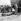 Guerre d'Indochine. Légionnaires autour d'un cadavre. © Roger-Viollet