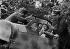 World War II. Front of Normandy, June 1944. Messerschmidt 109, German fighter-bomber. © LAPI/Roger-Viollet