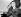 Audrey Hepburn (1929-1993), actrice britannique, embrassant un oiseau lors d'une exposition nationale à la Société royale d'horticulture. Londres (Angleterre), décembre 1949. © PA Archive / Roger-Viollet