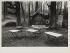"""The """"Chalet du fer à cheval"""" refreshment stall in the Saint-Cloud park (France), 1970. Photograph by Jean-Claude Vénézia (1941-2013). Bibliothèque historique de la Ville de Paris. © Léon Claude Vénézia/BHVP/Roger-Viollet"""