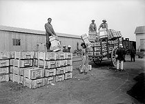 World War I. Chinese workers transporting boxes of ammunition in a French arms factory. © Roger-Viollet
