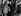 Krach de 1929. Acheteurs dans un bureau d'agents de change se réjouissant de l'augmentation des valeurs. New York (Etats-Unis). © TopFoto / Roger-Viollet