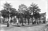 Paris Montmartre (XVIIIth district). The Tertre place, about 1900. © Neurdein / Roger-Viollet