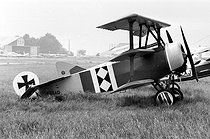 German fighter triplane Fokker Dr 1 (1917), the airplane of Baron Manfred von Richthofen (1892-1918), an ace among German fighter pilots, during an air show. © Jacques Cuinières/Roger-Viollet