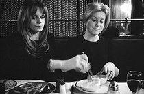 Françoise Dorléac (1942-1967) and Catherine Deneuve (born in 1943), French actresses. Paris. 1965. © Roger-Viollet