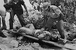 Cuba. Cadavre d'un mercenaire. Baie des Cochons (Playa Girón), tentative de débarquement encouragée par la CIA, 17-19 avril 1961.     GLA-BFC-P1 © Gilberto Ante/BFC/Gilberto Ante/Roger-Viollet