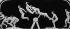 Précurseurs du cinéma. Décomposition d'un saut de cheval, par un procédé semblable au chronophotographe d'Etienne Jules Marey (1830-1904). © Albert Harlingue/Roger-Viollet